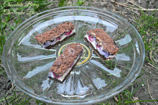 Chocolate Berry Cheesecake Bars 1